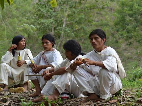 41% de las lenguas nativas en Colombia se encuentran en estado de peligro