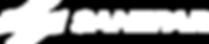 sanepar2012_logo.png
