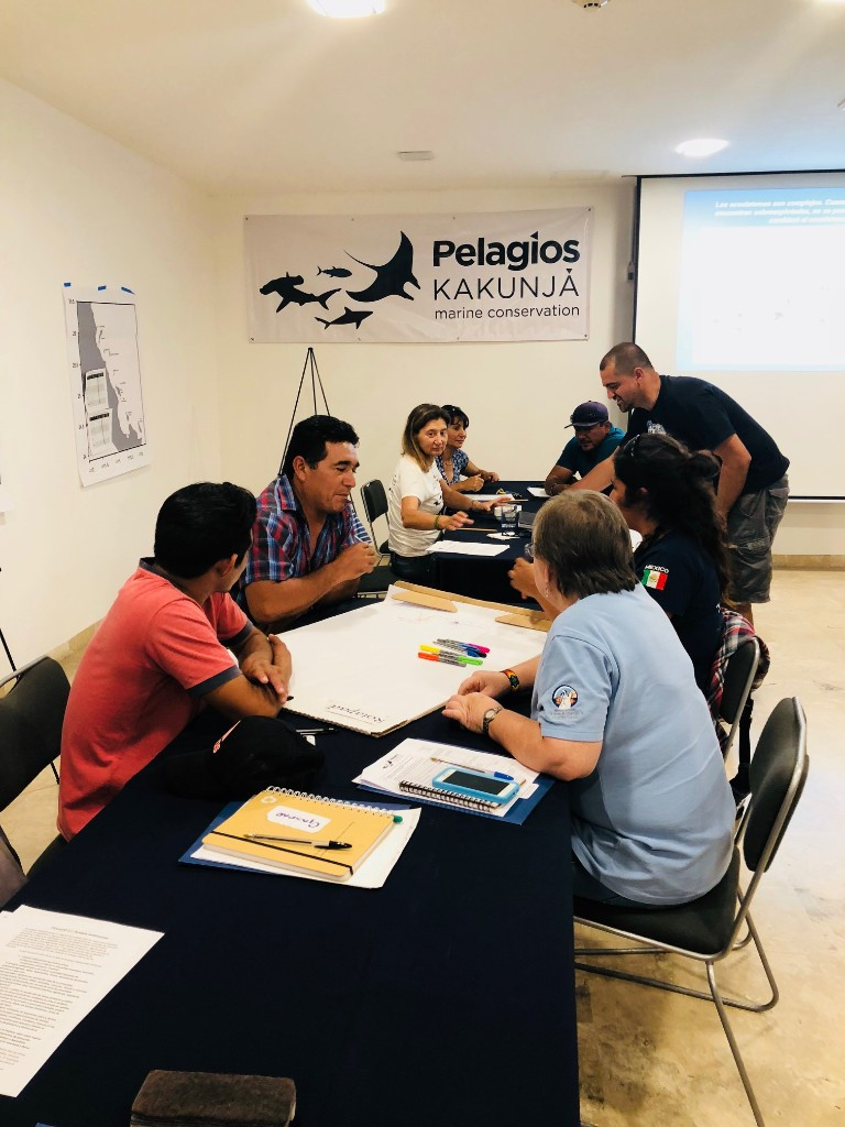 MERITO Foundation and Pelagio Kakunja in collaboration to protect Hammerhead sharks of the Southern