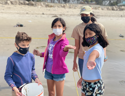 Sand Crab Monitoring