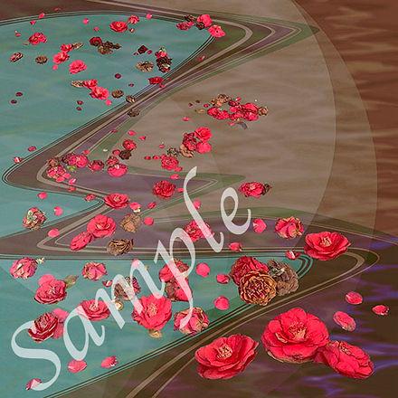 camellia sample.jpg