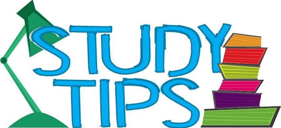6th Year Weekly Checklist & Study Plan