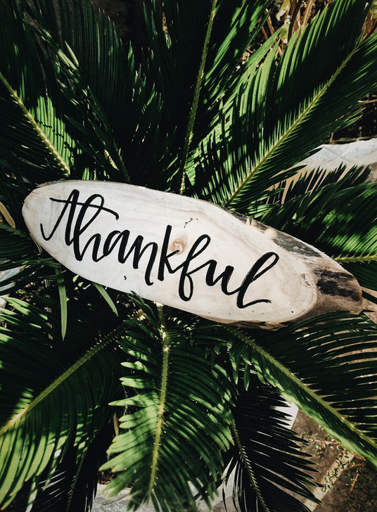 Be thankful! Source: Unsplash by Jessica Castro