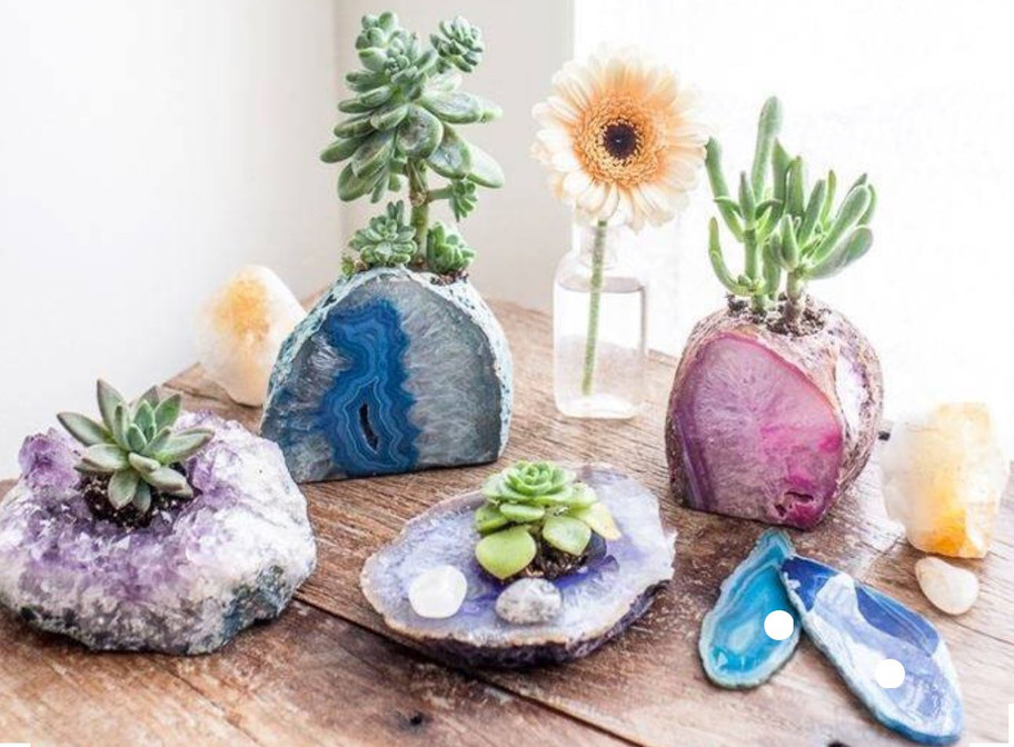 Crystals, plants and beautiful things! Source: Unknown // Pinterest