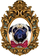 pug vodka image