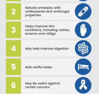 Benefits of Juniper Berries