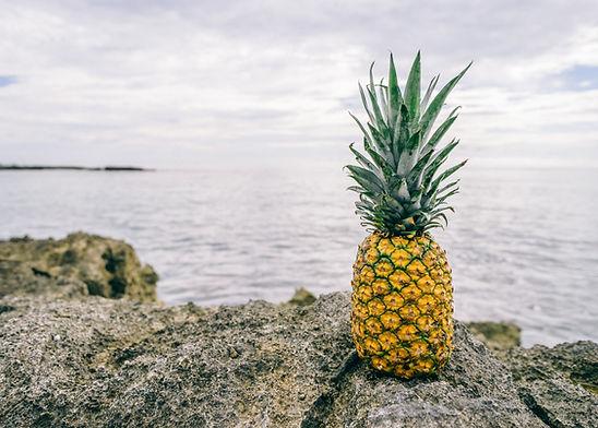 Piña por el mar