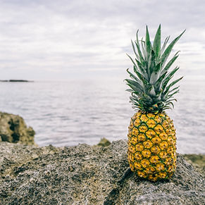 Ananas by the Sea