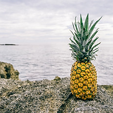 Pineapple M (16 oz)