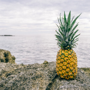 The Prickly Pickle with Organic Pineapples