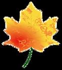 autumn-leaf-4.png