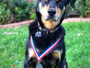 Sammy with Second GABF Medal