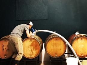Filling First Barrels