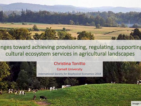 Achieving provisioning, regulating, supporting, and cultural ecosystem services in agricultural land