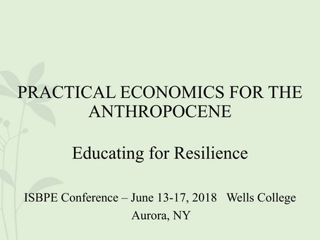 Practical Economics for the Anthropocene: Education for Resilience