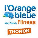 Logo club Thonon_Plan de travail 1.jpg