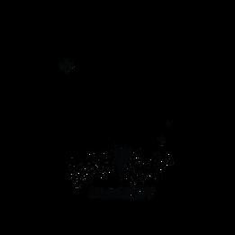Wild Light Imagery Black Transparent Log