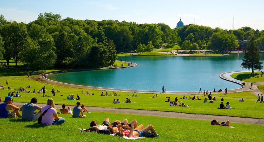 Summer by Beaver Lake Pavilion