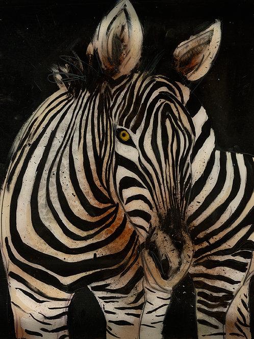 Zebra on Fine Art Paper 13x19