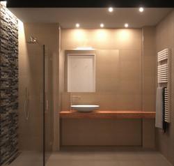 Bathroom rendering opt.2
