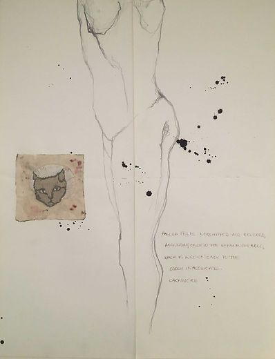 drawing with text embroidery. Cat and torso