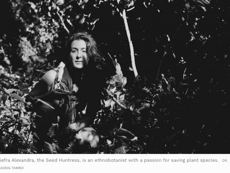 The Seed Huntress: On A Quest To Preserve Biodiversity