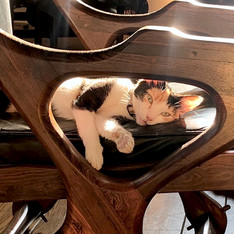 Shmoo in her Don Shoemaker Swing Chair