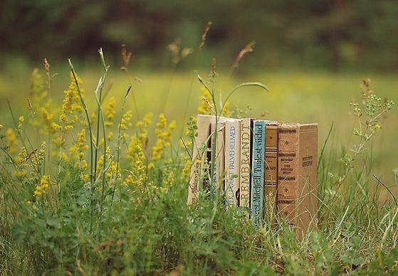 books-1438656_1.jpg