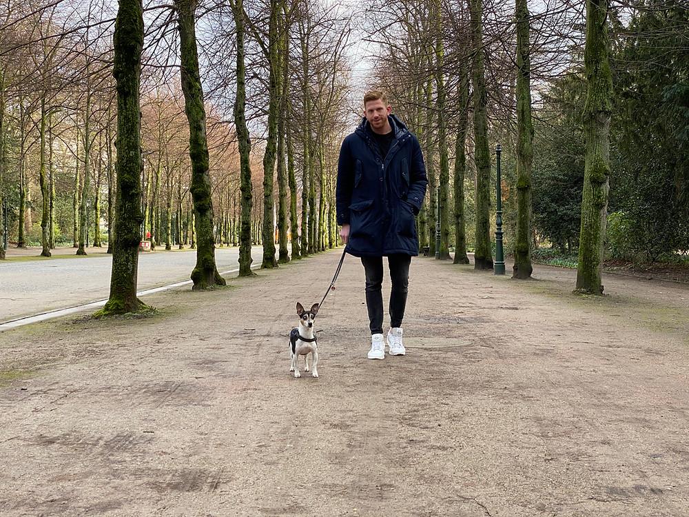 Mann mit Hund auf Allee