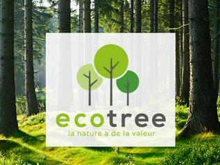 La Fondation Optimind contribue à la reforestation avec EcoTree