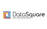 DataSquare