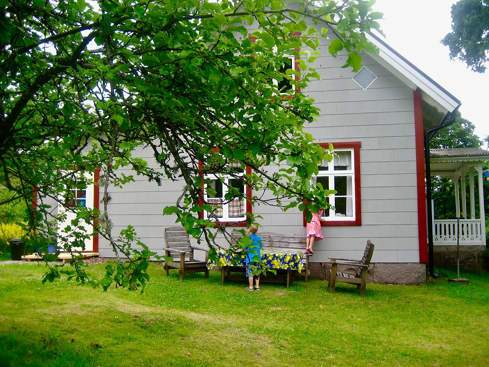 Swedish house.jpeg