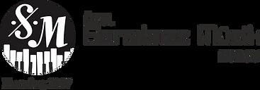 MS logo (2).png