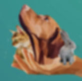 Capdouleur Logo 02.png.jpg