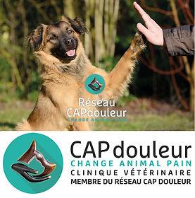 CapDouleur photo.jpg