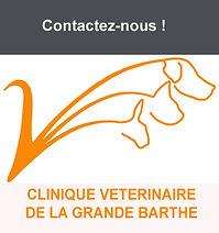 Grande Barthe Logo.jpg