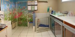 Chenil d'Hospitalisation