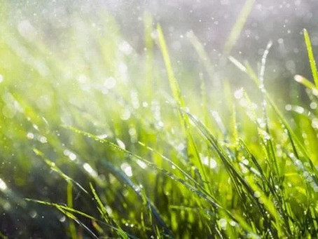 Is it ok to mow wet grass?