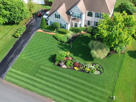 It's almost time for lawn restoration!