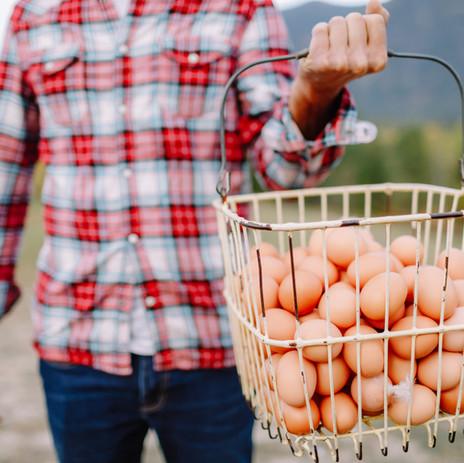 Creston Eggs-1070.jpg