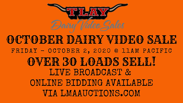 OCTOBER DAIRY VIDEO SALE.png