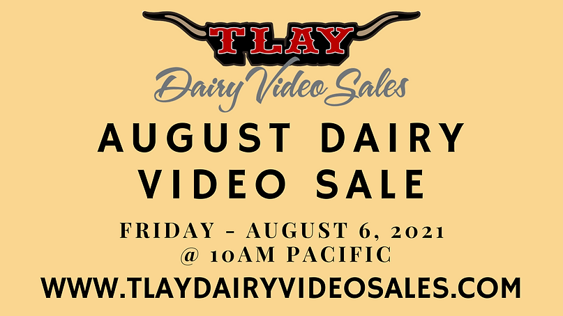 AUGUST DAIRY VIDEO SALE.png