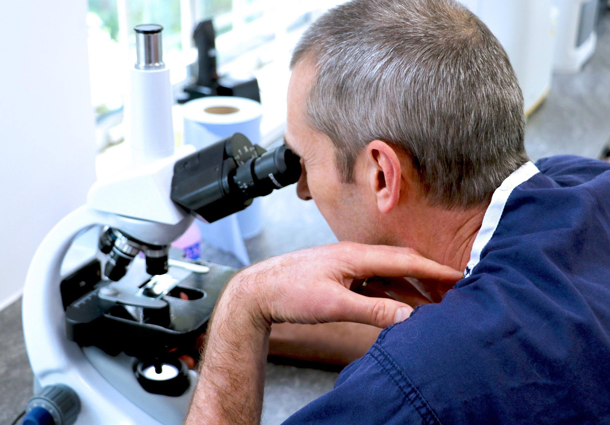 microscope02