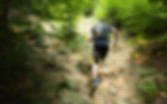 Trail Run Image.jpg