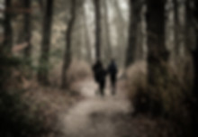 Trail 3.jpeg