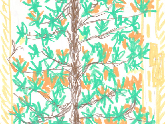 tree2000_edited_edited.jpg