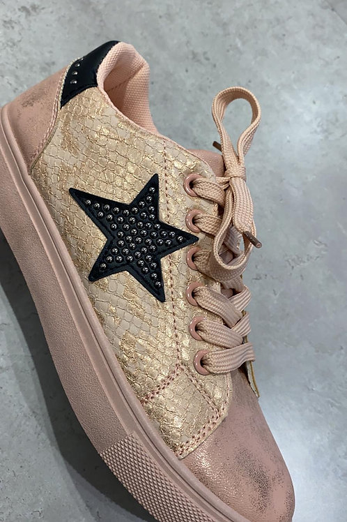 Star Stud Trainers