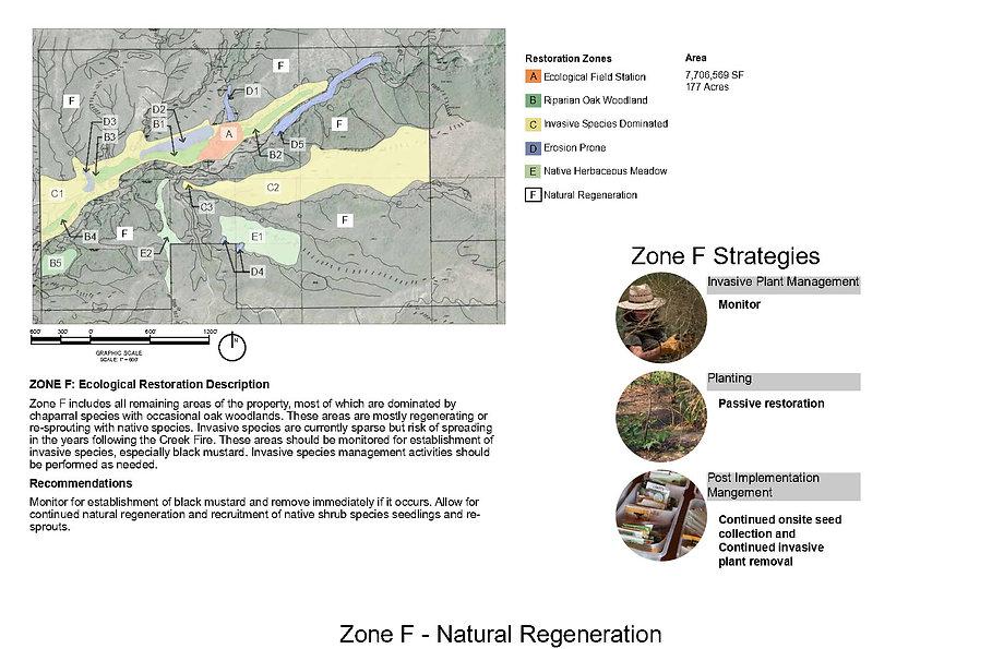 zone_F_strategy.jpg