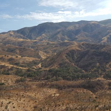 Gold Creek Fire Restoration