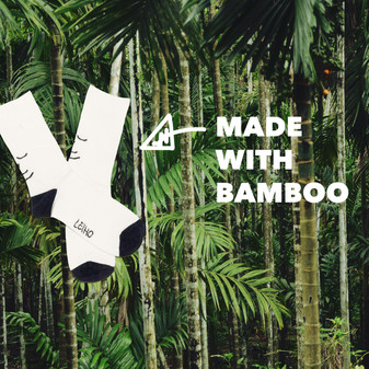 Why We Chose to Use Bamboo